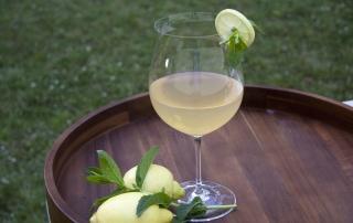 Erfrischender Zitroneneistee mit Minze, schnell selbstgemacht, Carl Tode Göttingen